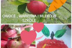 program-owoce-6